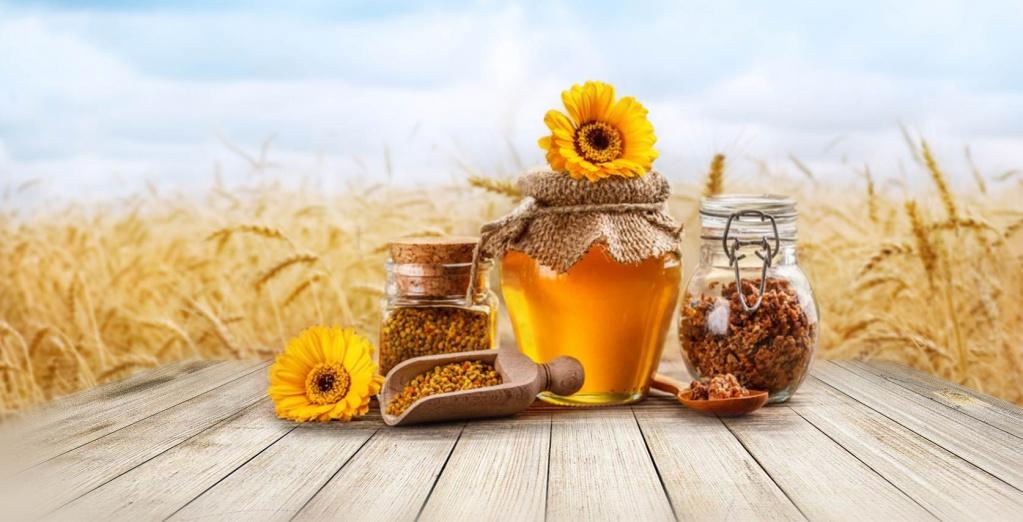 Купить товары для пчеловодства